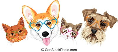 Happy welsh corgi, schnauzer and two cute cats in glasses...