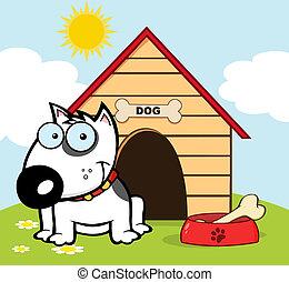 Happy White Bull Terrier