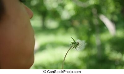 Happy woman blowing dandelion seeds in the Park , slow motion