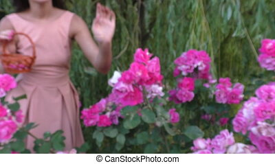 Happy woman in the garden. - Happy woman admiring flowers in...