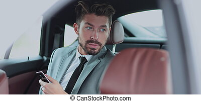 Happy young businessman using mobile phone in back seat of...