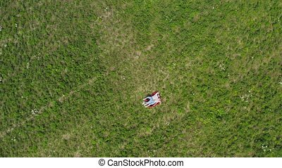 Happy young couple lying on the grass in the meadow. The...
