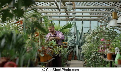 Happy young florist couple in apron working in greenhouse. Cheerful woman embrace and kiss husband watering flowers with garden pot
