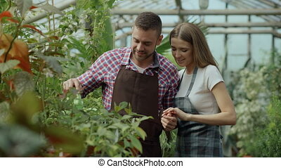 Happy young florist couple in apron working in greenhouse. Cheerful woman embrace her husband watering flowers with garden pot