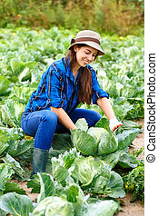 Happy young girl with cabbage