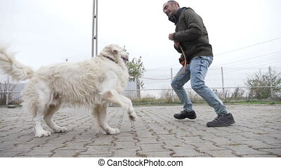 Happy young man playing and running with his white dog in...