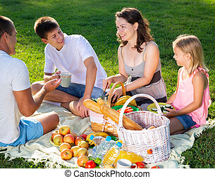 Happy young parents with two teenagers having a picnic on the countryside