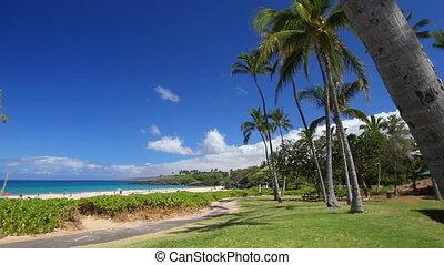Hapuna Beach Landscape