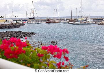 Harbor in Costa Adeje