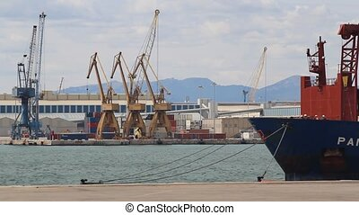 Harbor with cranes container ship