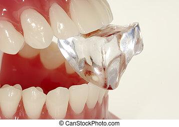 Hard Enamel - Teeth Biting Down on a Clear Stone
