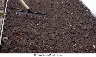 Hard spring gardening - Gardener raking soil with garden...