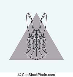hare., geometrisch, kopf