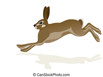 Hare - Running hare. The illustration on white background.