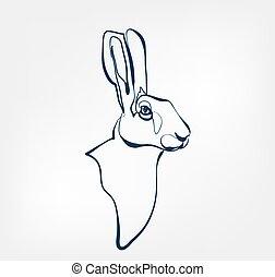 hare vector animal wild one line design
