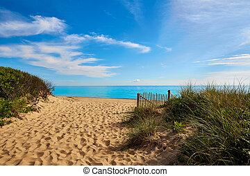 hareng, anse, nous,  Massachusetts, cap, plage, morue