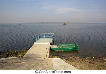 Harike wetlands with green boat