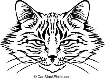 Harmful cat muzzle - Vector illustrations of contour image ...