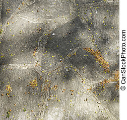 harmonic pattern of slate tiles at the floor