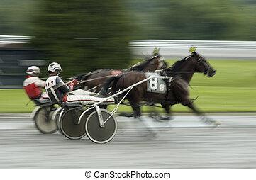 harness race close call