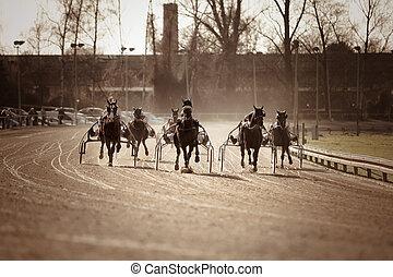 Harness Racing .horse  - Harness Racing .horse