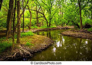 harrisburg, wildwood, pennsylvania., parque, corriente