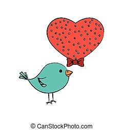 hart, houd van vogel, schattig