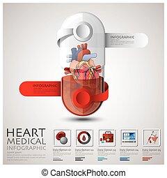 hart, medisch, capsule, infographic, gezondheid, pil