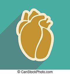 hart, stijl, pictogram, menselijk, plat