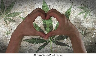 hart, symbool, blad, marihuana, handen