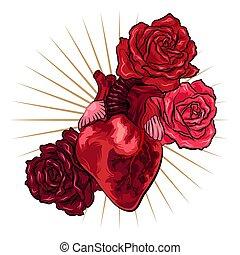 hart, tatoeëren, illustratie, rozen, vector, menselijk, style., rood