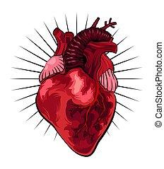 hart, tatoeëren, illustratie, vector, menselijk, style.