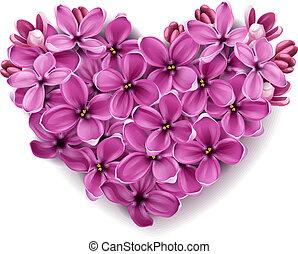 hart, van, bloemen, van, een, lilac.