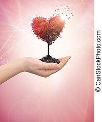 hart, van een vrouw, boompje, holdingshand