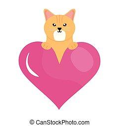 hart, weinig; niet zo(veel), liefde, schattig, karakter, kat