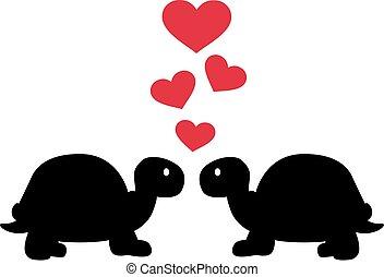 hartjes, liefde, twee, schildpadden