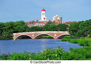 harvard, campus de la universidad, en, boston