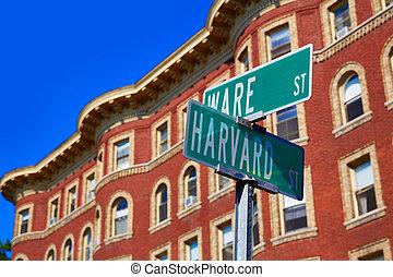 Harvard street st in Cambridge Massachusetts