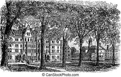 Harvard University, Cambridge, Massachussets vintage engraving