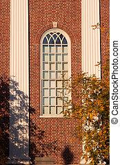 Harvard Unversity Window in Fall
