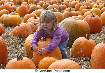 harvest 7009 - girl and pumpkins
