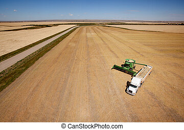 Harvest Aerial - Aerial shot of a combine emptier a hopper...