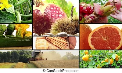 harvest and agricultural products