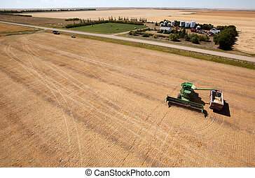 Harvest and Farm - A harvester filling a grain truck with...