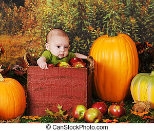 A young baby in a wooden crate, surrounded by fresh apples and pumpkins.