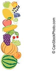 harvest background illustration. vector
