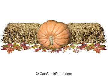 Harvest Decore - Harvest decorations