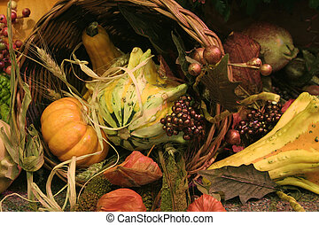 Harvest Display 2 - Harvest Pictures