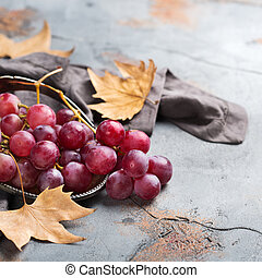 Harvest fall autumn concept. Ripe juicy red grapes