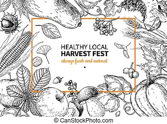 Harvest festival. Hand drawn vintage vector frame illustration with vegetables, fruits, leaves.
